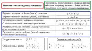 Математика 6 класс. Краткий курс. Числа и величины